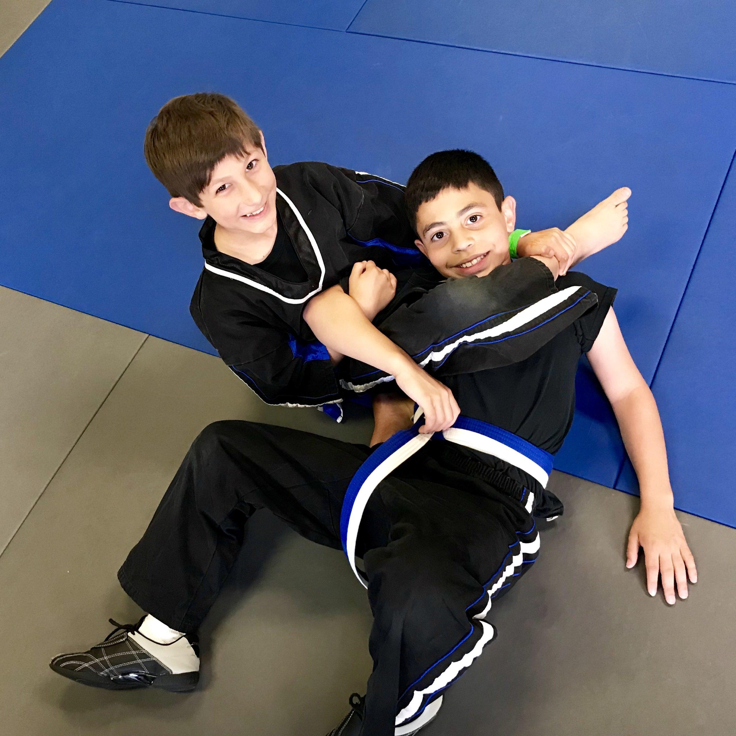 Kids Martial Arts Aids Development